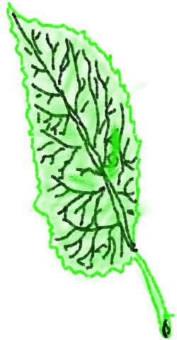 Drawing16cd